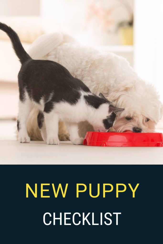 A new puppy check list should include dog bowls, chew toys, puppy food and lots of love.